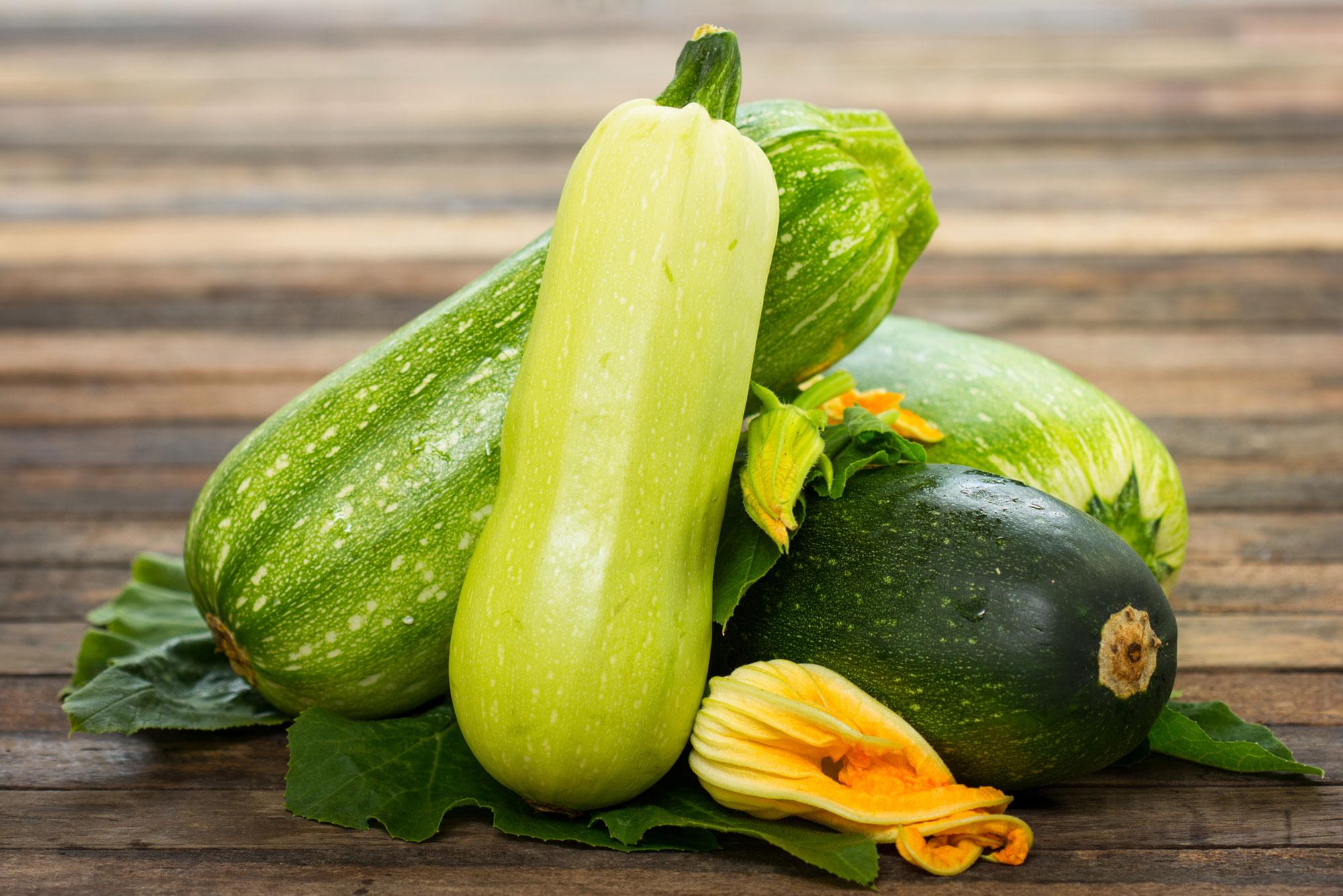 Varietà Zucchine Da Fiore perché mangiare le zucchine fa bene? – grand chef evolution